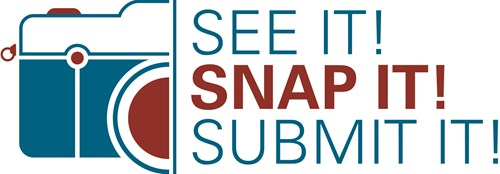 See it! snap it! submit it!