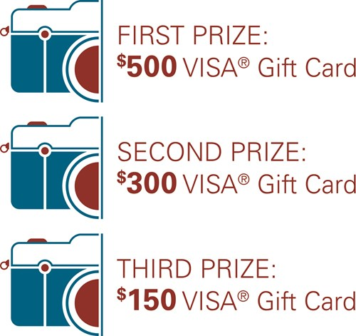 First Prize winner receives a $500 Visa Gift Card, Second Prize Winner receives a $300 Visa gift card, third prize winner receives a $150 visa gift card
